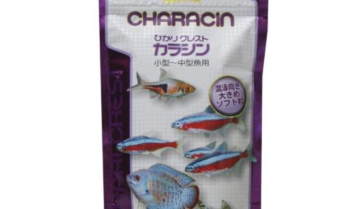 熱帯魚に合わせた餌の種類と選び方!アクアリウムのプロが選ぶオススメの製品は?